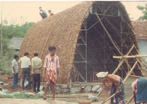 Coconut Shell House